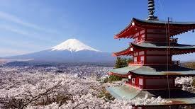 20年ぶりの富士登山でマーケティングを考える